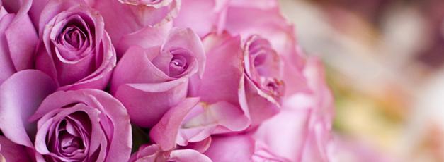 flowerstips